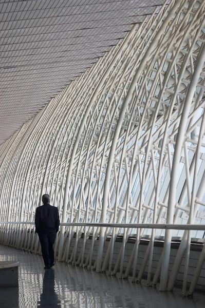 Executivo aeroporto Brasilia dez06-alta