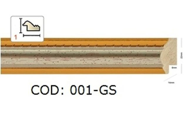 001-GS