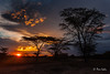 Sunset at Massai Mara