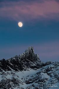 Bajo el embrujo de la Luna