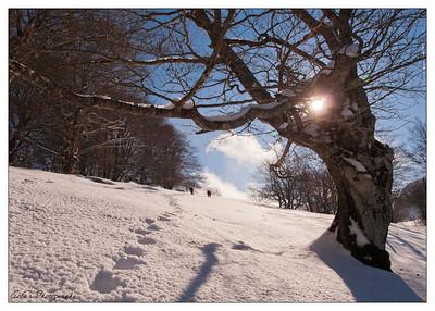 Y un poco mas de nieve