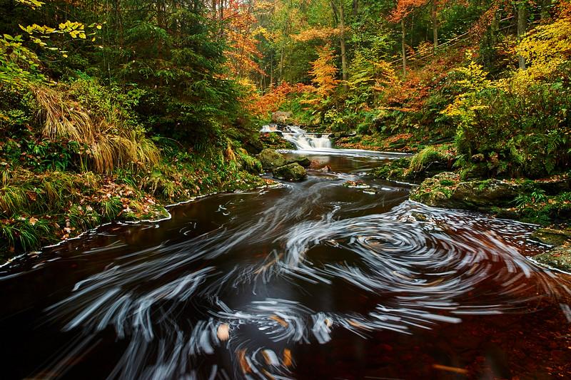 Goldner Herbst im Valle de la Hoegne