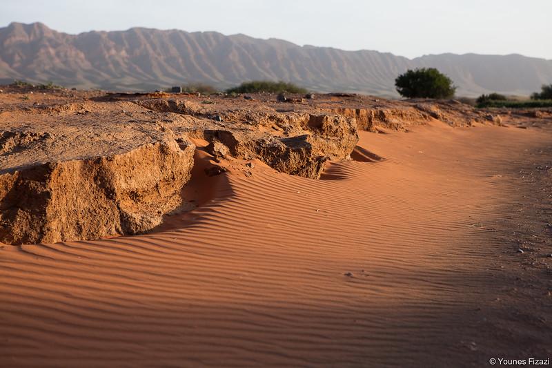 Randonnée pédestre dans le désert