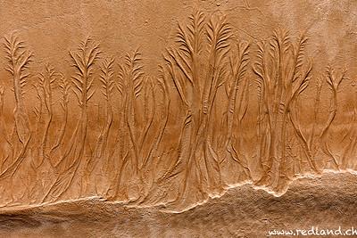 Meeresspuren im Sand