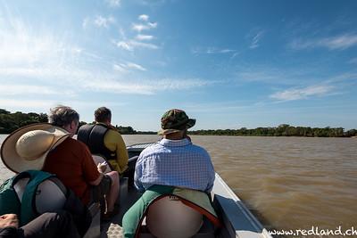 Jaguartour im Nordpantanal