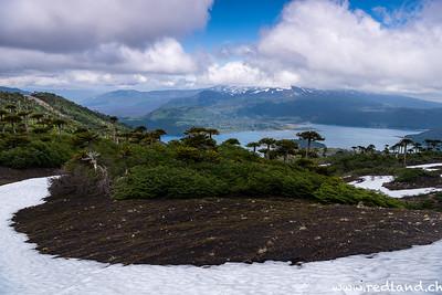 Parque Nacional Conguillio