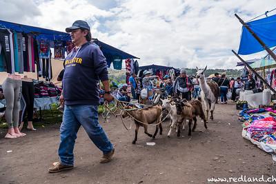 Otavalo Tiermarkt