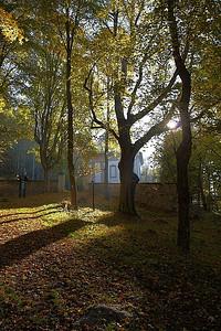 """Podzimní """"malování"""""""