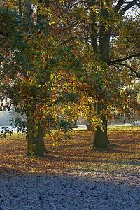 Podzim v Českých Budějovicích