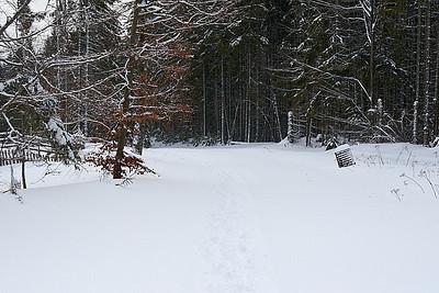 Zima v lednu 2012