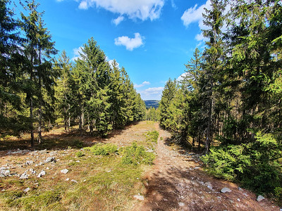 Chráněná krajinná oblast Brdy | Brdy Protected Landscape Area