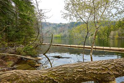 """Černé a Čertovo jezero – Šumava   Černé jezero """"Black Lake"""" and Čertovo jezero """"Devil's Lake"""" – Bohemian Forest"""