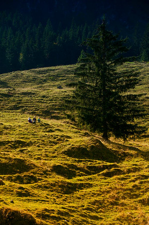 Kindheit in den Alpen