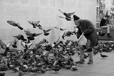 Birdman, Paris