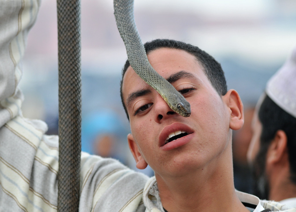 Junger Schlangenbeschwörer auf dem Djemaa el Fna