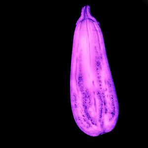 Aubergine - UV Licht
