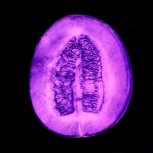 Honigmelone - UV Licht