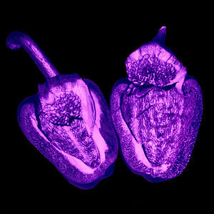 Paprika - UV Licht