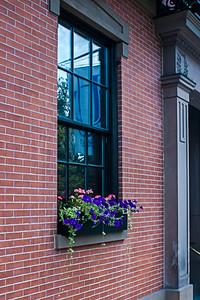 Fenêtre fleurie.