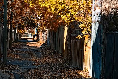 Ruelle de Montréal en automne.