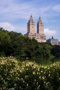 Vue de Central Park.