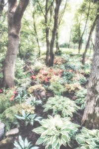 150729-Centre Nature-031