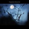 Projections Nocturnes