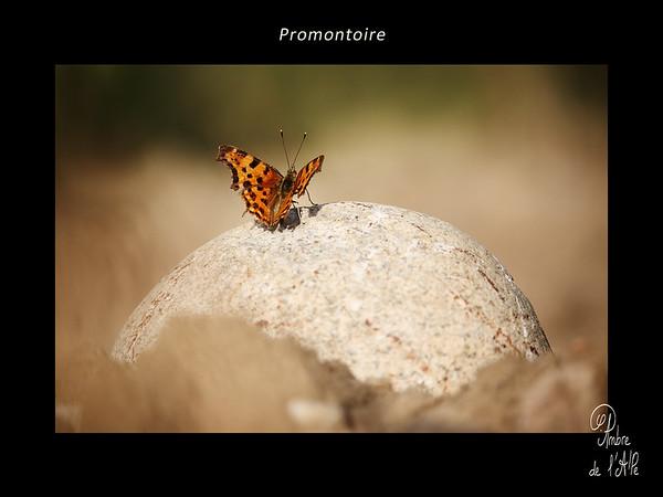 Promontoire