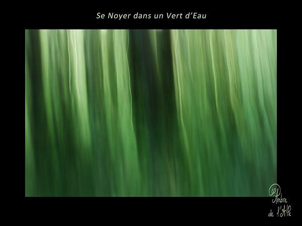 Se Noyer dans un Vert d'Eau
