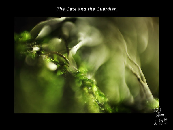 The Gate and the Guardian