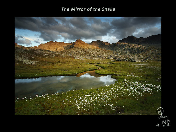 The Mirror of the Snake