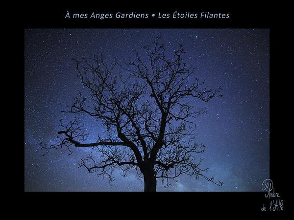 A Mes Anges Gardiens • Les Etoiles Filantes ...