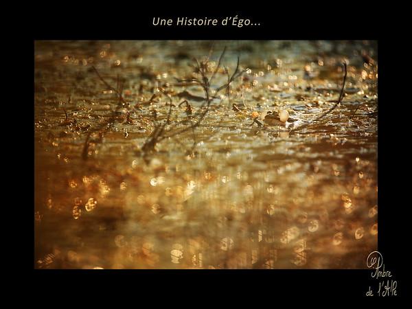 Une Histoire d'Ego...