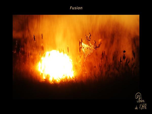 Fusion Liquide
