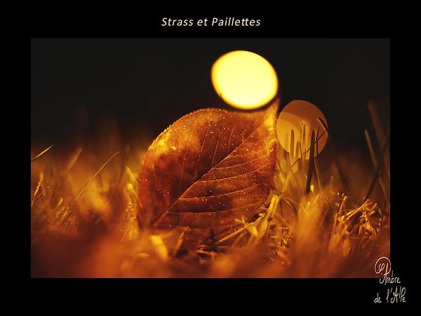 Strass et Paillettes