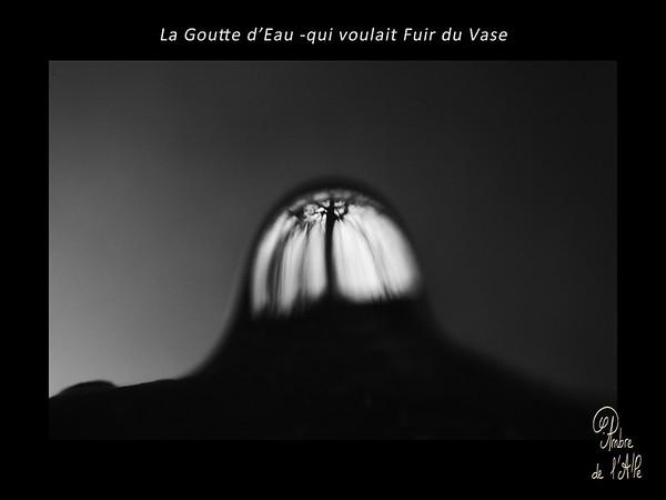 La Goutte d'Eau -Qui Voulait Fuir du Vase