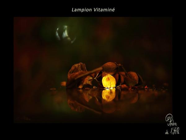 Lampion Vitaminé.