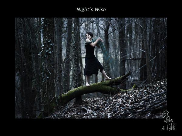 Night's Wish