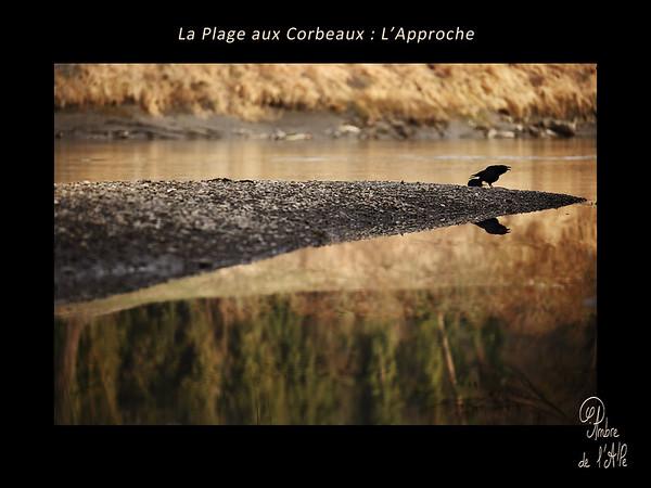 La Plage aux Corbeaux : L'Approche