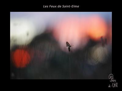 Les Feux de Saint-Elme