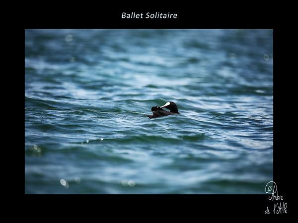 Ballet Solitaire