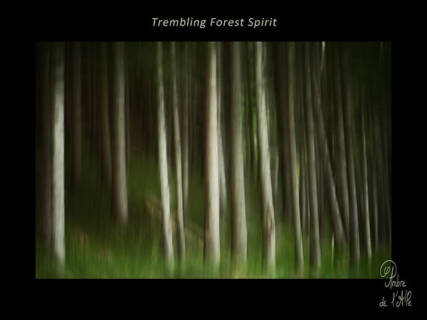 Trembling Forest Spirit