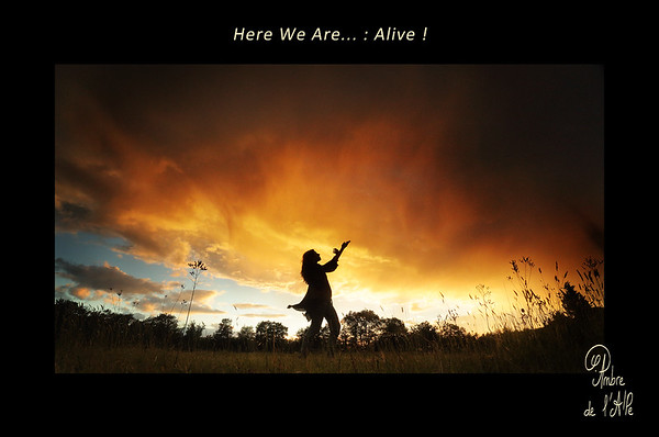 Here We Are : Alive...