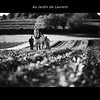 Au Jardin de Laurent