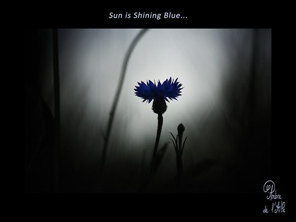 Sun is Shining Blue
