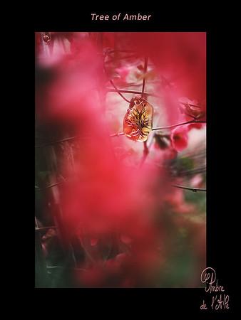 Tree of Amber