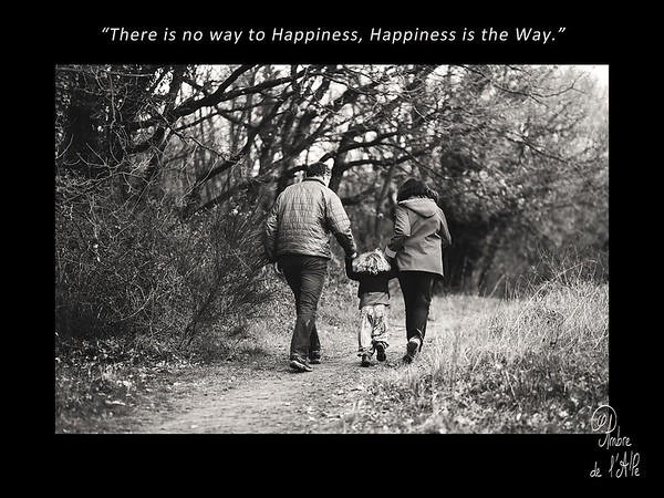 """There is no way to happiness, Happiness is the Way"""