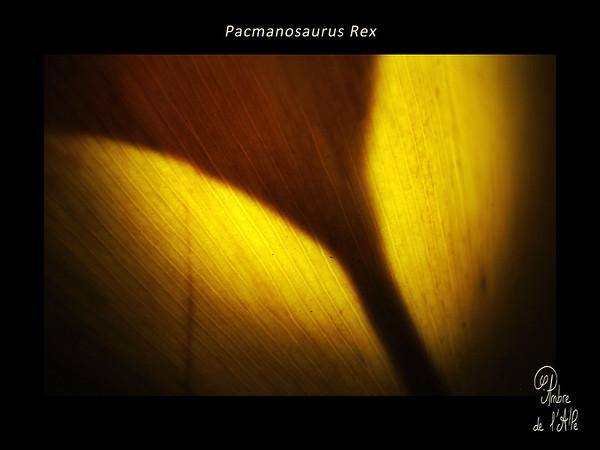Pacmanosaurus Rex