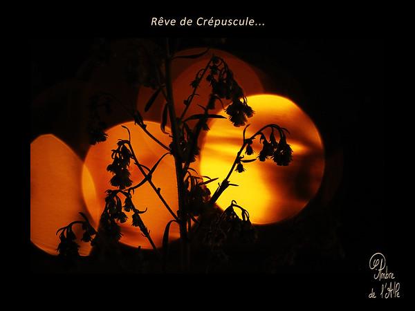 Rêve de Crépuscule...