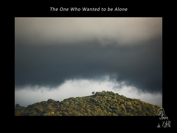 The One Who Wanted to be Alone